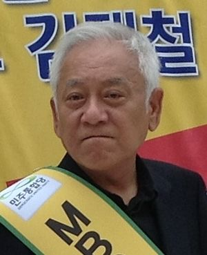 South Korean local elections, 2014 - Image: Kim Han Gil (cropped)