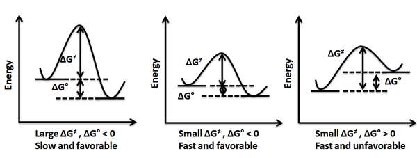 energy profile  chemistry