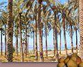 Kinneret, Israel - panoramio.jpg