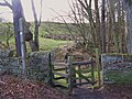 Kissing gate on the path to Oakpool - geograph.org.uk - 715816.jpg
