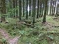 Kvarnränna till Skymlagårdens skvaltkvarn (RAÄ-nr Sörby 159) 3733.jpg