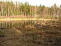 Līksna Parish, LV-5456, Latvia - panoramio (8).jpg