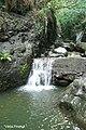 La Cascada Escondida.jpg
