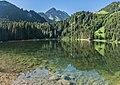 Lac des Plagnes 06.jpg