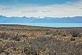 Lago Argentino-CTJ-IMG 7682.jpg