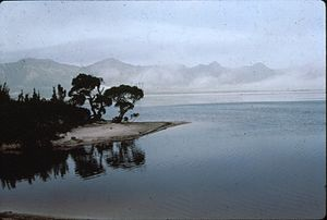 Lake Pedder - Shores of Lake Pedder, ca. 1970