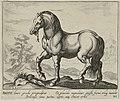 Landschap met paard uit Engeland. NL-HlmNHA 1477 53011513.JPG