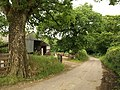 Lane at Colepark - geograph.org.uk - 853550.jpg