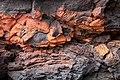 Lava - Cueva de los Verdes.JPG