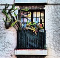 Le cactus rue d'Aubenas.jpg
