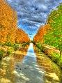 Le canal de Chelles - panoramio (1).jpg