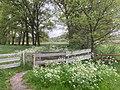 Legaat De Klencke Oosterhesselen Klenckerveld Natuurgebied Landgoed Natuurmonument Nieuwe Natuur 14 33 18 575000.jpeg
