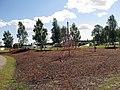 Lekplatsen vid Strandängarna i Kalix.jpg