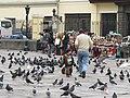 Lima Peru (4870111968).jpg