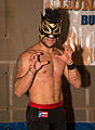 Lince Dorado at LuchaTO Jan 2016.jpg