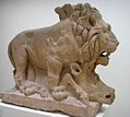 Lion and Wild Boar (668423723).jpg