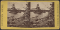 Little Chicken Island, Lake George, from Robert N. Dennis collection of stereoscopic views.png