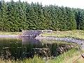 Loch Thom - geograph.org.uk - 1417677.jpg