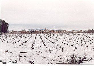 109th Mixed Brigade - Landscape near Utiel in the winter, where the 109th MB was formed.