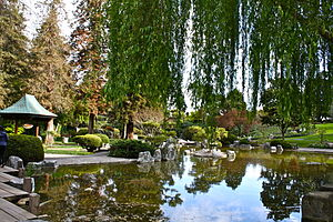 Lower pond at Japanese Friendship Garden in San Jose
