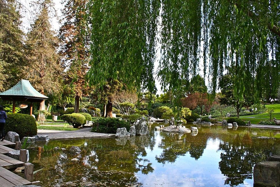 Lower pond at Japanese Friendship Garden in San Jose