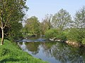 Lure river Ognon - panoramio - michiel1972.jpg
