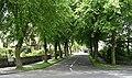 Lynnwood Gardens - geograph.org.uk - 473077.jpg