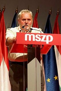 Zoltán Gőgös Hungarian politician