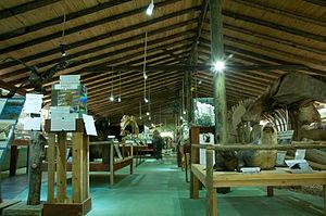 Museum of the Sea (Uruguay) - Image: MUSEO DEL MAR, Entrada