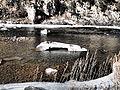Madison River near Ennis January 2015 09.JPG