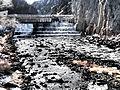 Madison River near Ennis January 2015 11.JPG