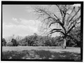 Magnolia Plantation, Louisiana Route 119, Natchitoches, Natchitoches Parish, LA HABS LA,35-NATCH.V,2-8.tif