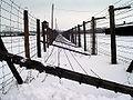 Majdanek winter.jpg