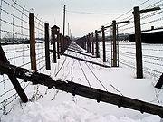 Majdanek winter