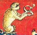 Majom (heraldika).PNG