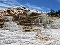 Mammoth Hot Springs - Flickr - brewbooks (1).jpg