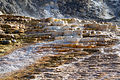Mammoth Hot Springs 11 (8039000796).jpg