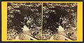 Mammoth Spring at Smugglers Notch, by John B. Heywood.jpg