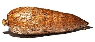 Cassava - A cassava tuber (waxed)
