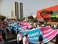 Marcha por la Vida 2018 Perú (10).jpg