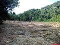 Margem do Tietê onde se extrai pedras para jardins... (coordenadas exatas). - panoramio.jpg
