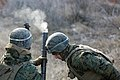 Marines Prepare for Platinum Lion with Live Fire Exercise 150106-M-KK554-951.jpg