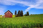 Meier Road Barn (immagini panoramiche della contea di Washington, Oregon) (washDA0034) .jpg