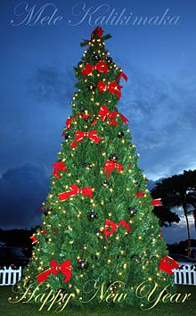 hawaiian christmas tree postcard