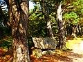 Memorial - panoramio (18).jpg