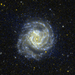 Messier 61 by GALEX - WIKISKY.png