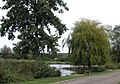 Mill Pond, near Hurst Green - geograph.org.uk - 58791.jpg