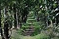Miltonrigg Wood - geograph.org.uk - 1485146.jpg