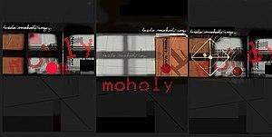 Istvan Horkay - Horkay Istvan Moholy-Nagy digital collage 2006