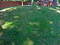 Monona Mound.jpg